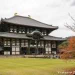 Qué ver en Nara en una mañana – Japón.