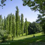 Parque del Oeste en Madrid, más de un siglo de historia.